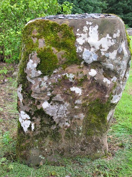 Dunino Den Pictish stone